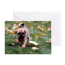 Puggle Dog With Leaves Greeting Cards
