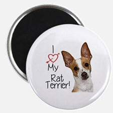 I Love My Rat Terrier! Magnet