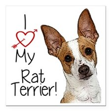 "I Love My Rat Terrier (L Square Car Magnet 3"" x 3"""