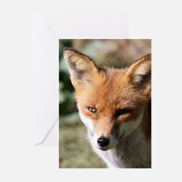 Fox001 Greeting Cards