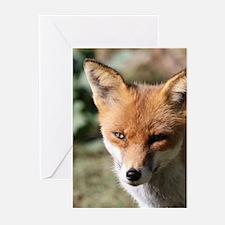Fox001 Greeting Cards