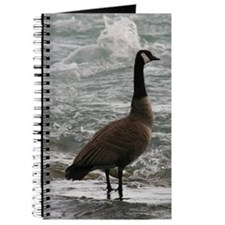A Canadian goose Journal