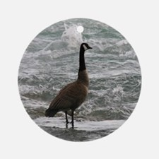 A Canadian goose Ornament (Round)