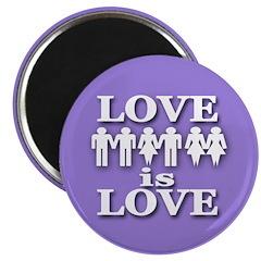 Love is Love -- Magnet