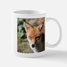 Fox001 Mugs