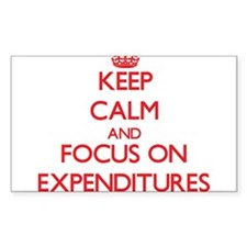 Keep Calm and focus on EXPENDITURES Decal
