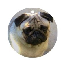 Pug headstudy Round Ornament