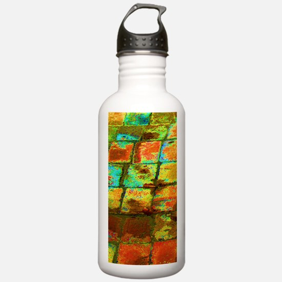 Cute Magic city Water Bottle