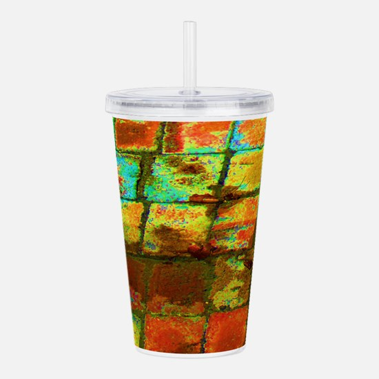Funny Red square Acrylic Double-wall Tumbler