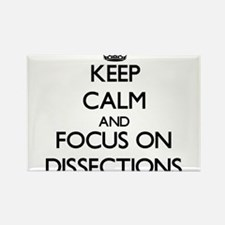 Keep Calm and focus on Dissections Magnets
