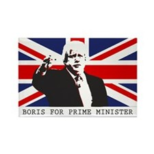 BORIS FOR PM Magnets