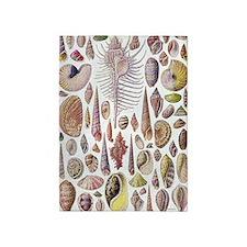 Vintage Ernst Haeckel Seashell 5'x7'area Rug
