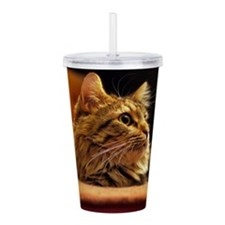 Cat ginger Acrylic Double-wall Tumbler