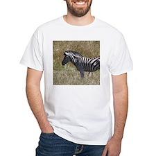 Zebra (front) T-Shirt