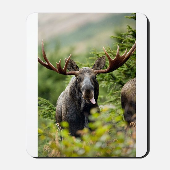 Mr Moose Sticking Tongue Out Mousepad