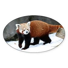 Red Panda Decal