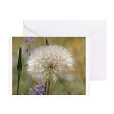 Dandelion Ball Greeting Cards