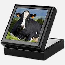 Holstein cow Keepsake Box
