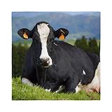 Holstein cow Queen Duvet Covers