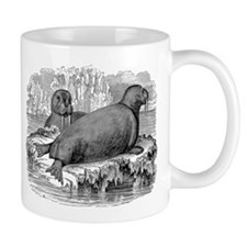 Vintage Walruses Illustration - 1800s Walrus Mugs