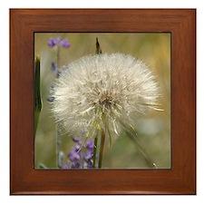 Dandelion Ball Framed Tile