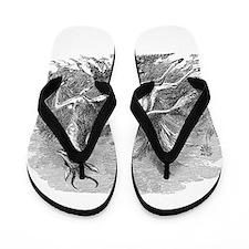 Unique Antelope Flip Flops