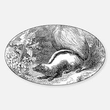 Vintage Skunks Illustration - 1800s Skunk Decal