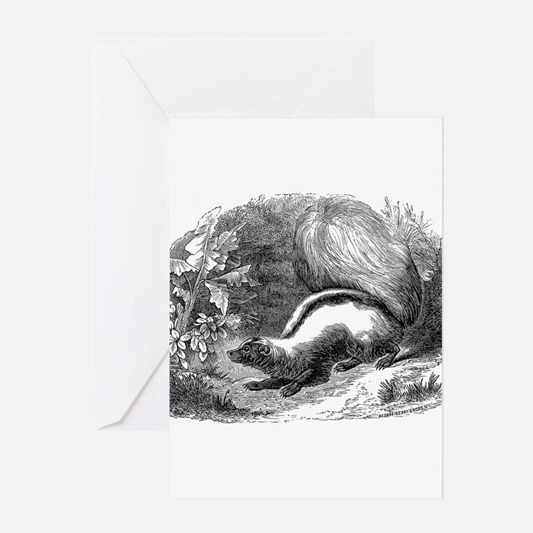 Vintage Skunks Illustration - 1800s Skunk Greeting