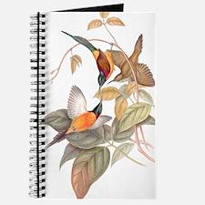 Goulds Sunbird Birds Journal