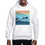 Dogs Chasing Ball Hooded Sweatshirt