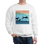 Dogs Chasing Ball Sweatshirt
