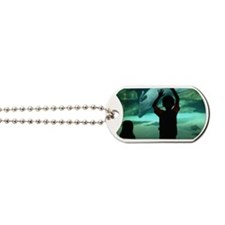 Dolphin Looking Glass Dog Tags