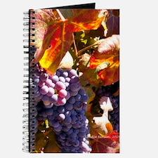 Unique Temecula Journal