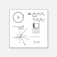NASA Voyager Golden Record Sticker