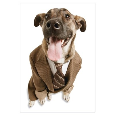 A Dog With A Suit Poster