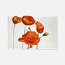 Poppies (orange) Magnets