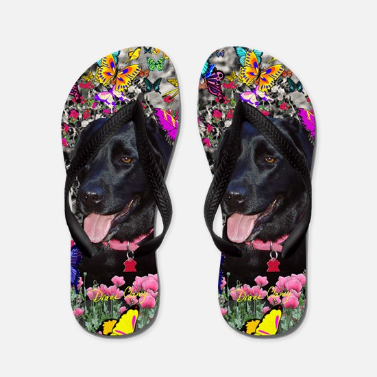 Abby Black Lab in Butterflies Flip Flops