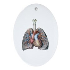 Human Anatomy Heart and Lungs Oval Ornament