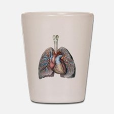 Human Anatomy Heart and Lungs Shot Glass