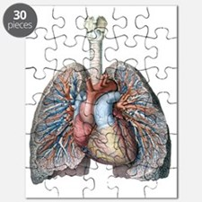 Human Anatomy Heart and Lungs Puzzle