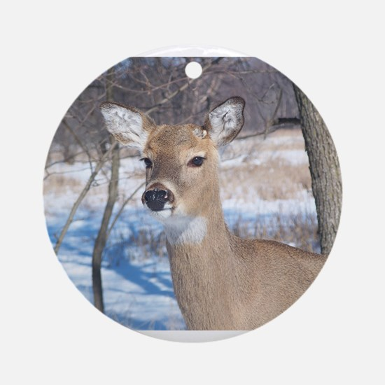 Buck Ornament (Round)