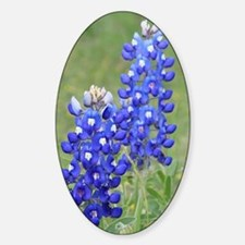 Twin bluebonnets Decal