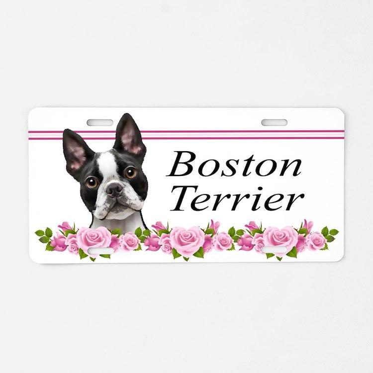 Boston pink roses Aluminum License Plate