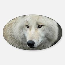 Polarwolf001 Decal