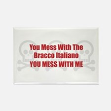 Mess With Bracco Rectangle Magnet