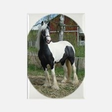 Cute Gypsy vanner horses Rectangle Magnet