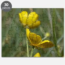 Buttercup Puzzle