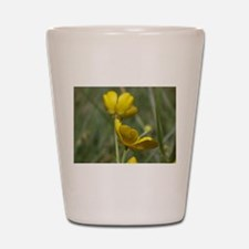 Buttercup Shot Glass