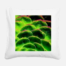Green Hen Square Canvas Pillow