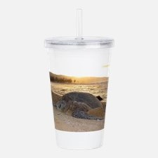 Honu at Sunset Acrylic Double-wall Tumbler